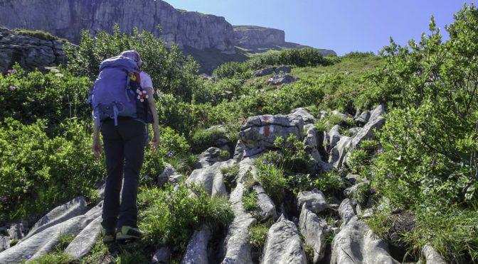 Schibenstoll 2234 m – unser 6. von sieben Churfirsten