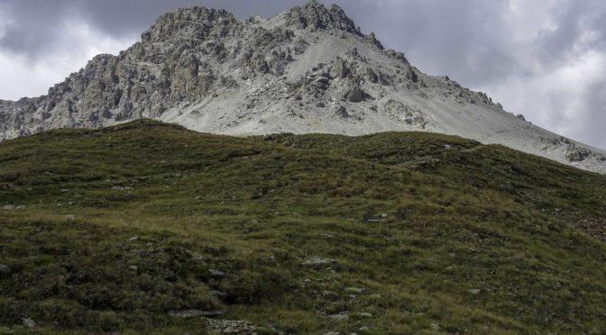 Piz Umbrail 3032 m ab Pass Umbrail