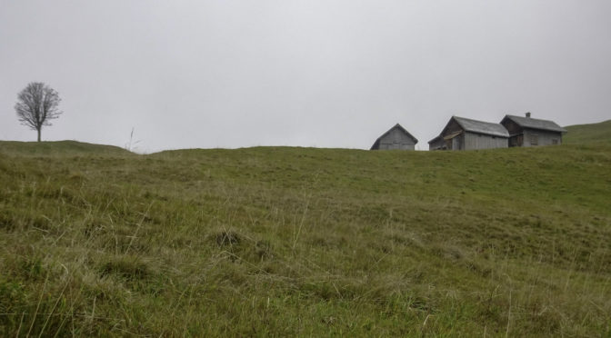 Neckertaler Höhenweg 3|3: Schwägalp – Hinterfallenchopf – Ennetbüel