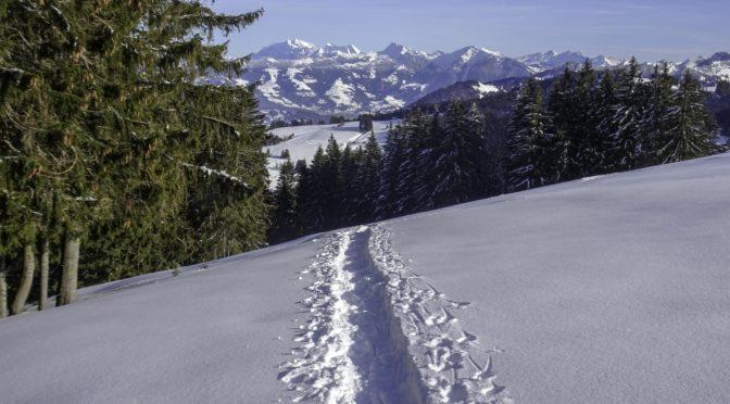 Stöcklichrüz 1246 m, Gueteregg 1270 m