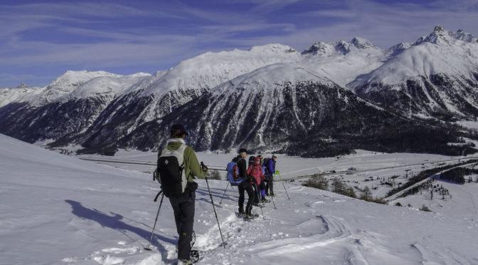 Oberengadin 4ǀ4: Alp Munt da la Bês-cha (2243 m) ab Celerina
