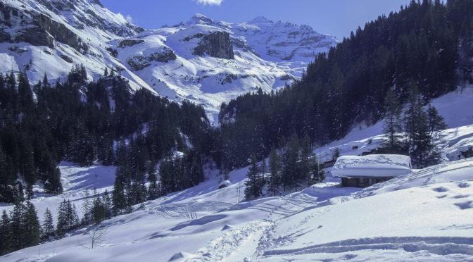 Griesalp 3ǀ4: Schneeschuhtrail (zur Erholung)
