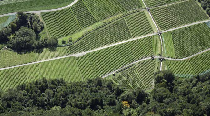 Fläscherberg – Regitzer Spitz 1135 m über die Leitern